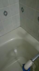 タイル地浴室1