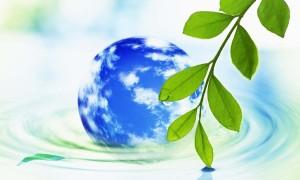 環境にいいエコ洗剤
